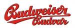 budvar image